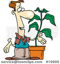 Cartoon Guy with a Potted Plant by Toonaday
