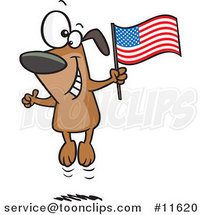 Cartoon American Dog Jumping by Toonaday
