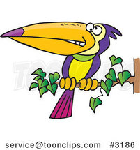 Cartoon Exotic Toucan Perched on a Branch by Toonaday