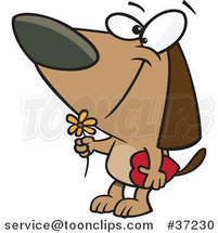 Cartoon Courting Valentines Day Dog with a Flower and Candy Box by Ron Leishman