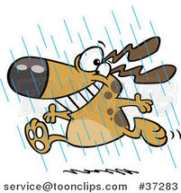 Cartoon Happy Dog Running in the Rain During Spring Showers by Ron Leishman