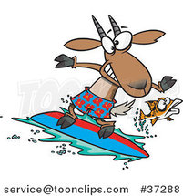 Cartoon Fish Leaping Away from a Surfing Goat by Toonaday