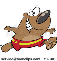 Cartoon Happy Bear Running in Swim Trunks by Toonaday