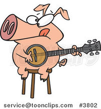 Cartoon Pig Sitting on a Stool and Playing a Banjo by Toonaday