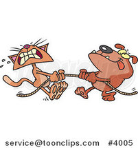 Cartoon Bull Dog and Cat Playing Tug of War by Ron Leishman