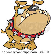 Cartoon Bulldog Wearing a Spiked Collar by Ron Leishman