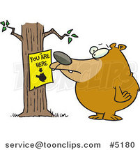 Cartoon Bear Staring at a You Are Here Sign by Toonaday