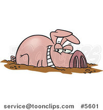 Cartoon Happy Pig in a Mud Puddle by Toonaday