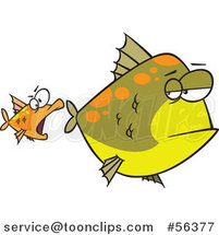 Cartoon Unamused Big Green Fish Looking Back at an Optimistic Orange Fish Trying to Attack by Ron Leishman