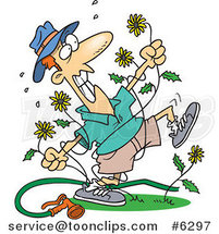 Cartoon Mad Guy Pulling Dandelions by Toonaday