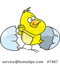 Cartoon Victorious Chick by an Egg Shell by Ron Leishman