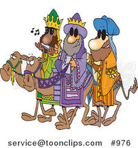 Cartoon Three Wise Dudes Wearing Shades and Riding Camels by Ron Leishman