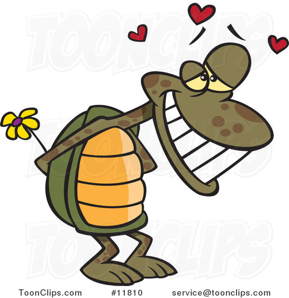 Cartoon Infatuated Tortoise Holding Flowers
