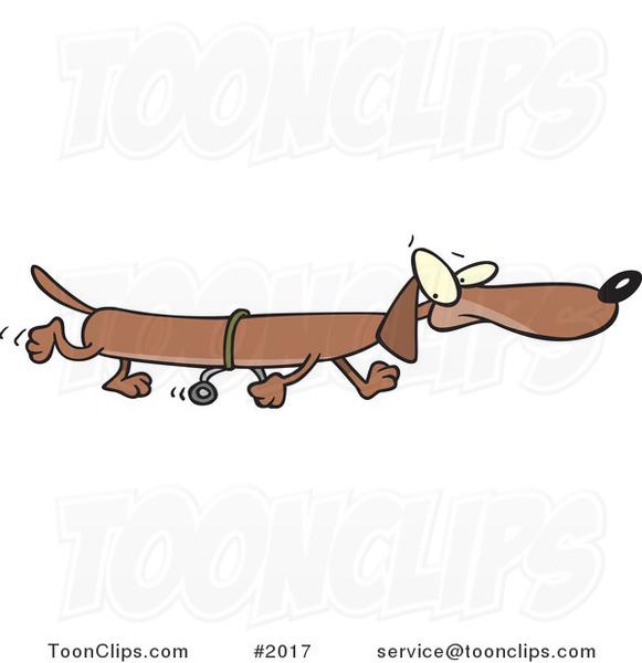 Long cartoon wiener dog using training wheels 2017 by ron leishman