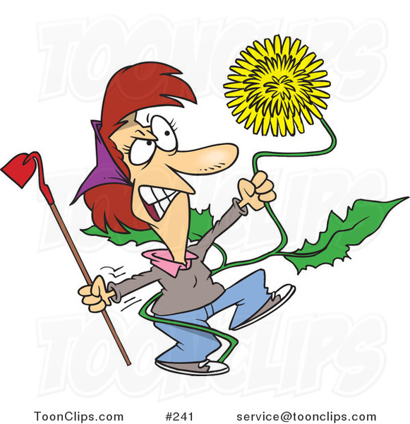 Cartoon Angry Lady Pulling a Giant Dandelion Weed