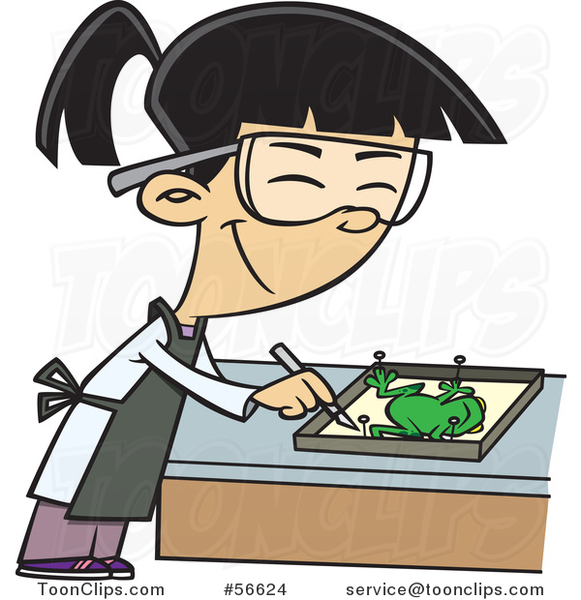 Cartoon Asian School Girl Dissecting a Frog in Class