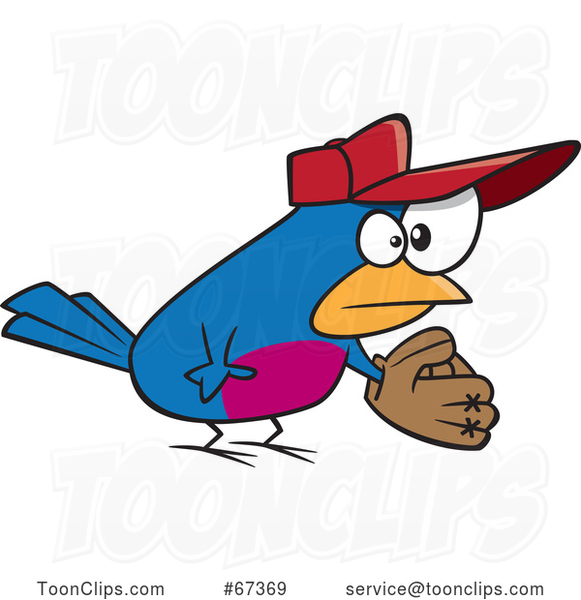 Cartoon Baseball Bird