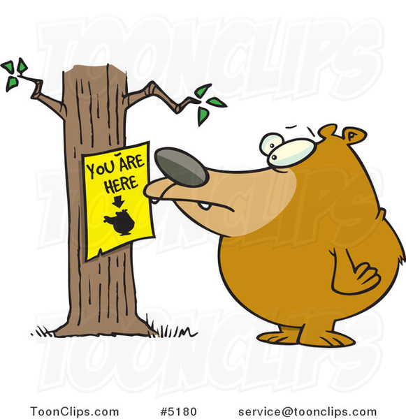 Cartoon Bear Staring at a You Are Here Sign