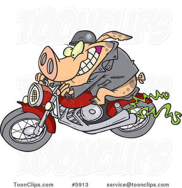 Cartoon Biker Pig