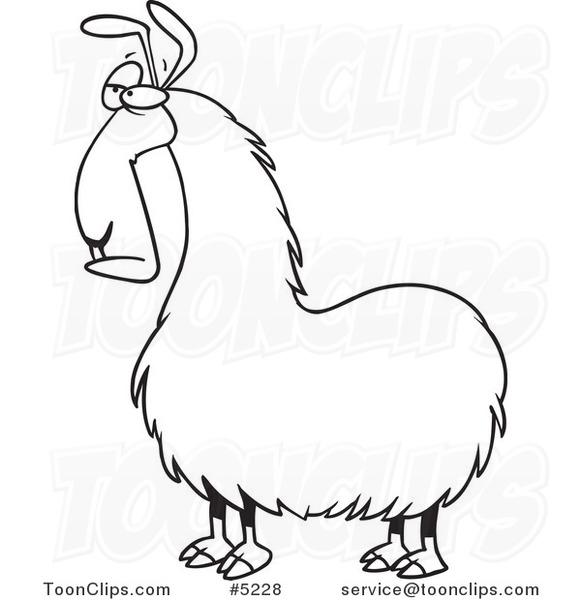 Line Drawing Llama : Cartoon black and white line drawing of a bored llama