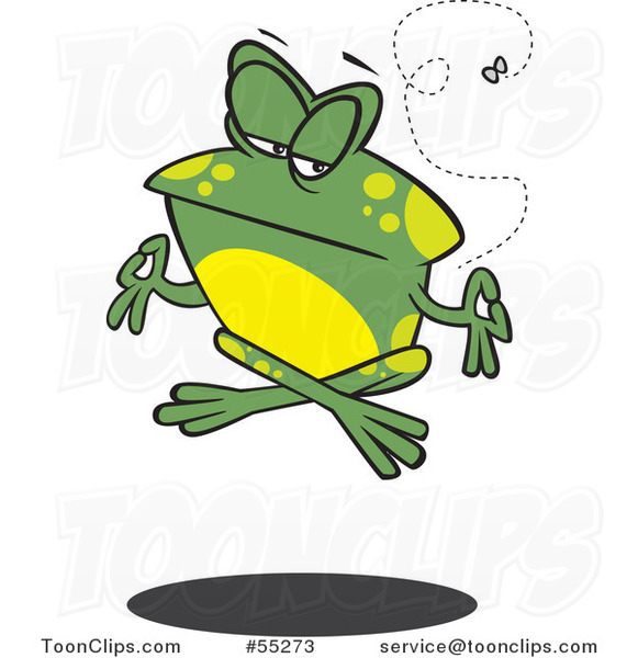 Cartoon Floating Meditating Frog and Fly