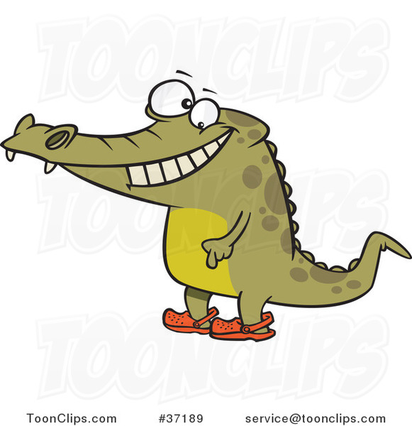 Cartoon Happy Crocodile Standing Upright and Wearing Crocs on His Feet