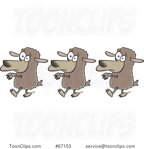 Cartoon Line of Sheep Following