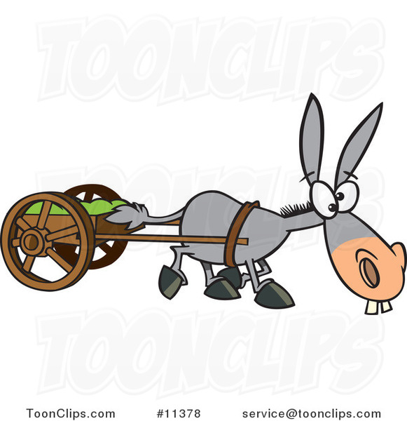 Donkeys And A Car