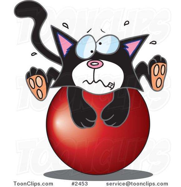 Cartoon Tuxedo Kitten on a Ball