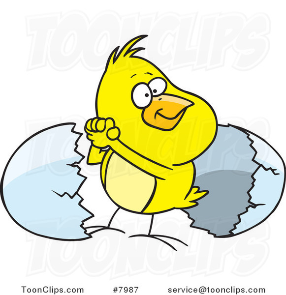 Cartoon Victorious Chick by an Egg Shell