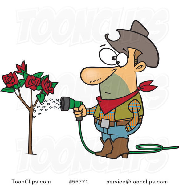 Cartoon White Cowboy Guy Watering a Rose Bush