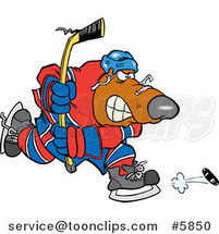 Cartoon Bear Hockey Player by Toonaday