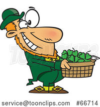 Cartoon Leprechaun Holding out a Basket of St Patricks Day Shamrocks by Toonaday