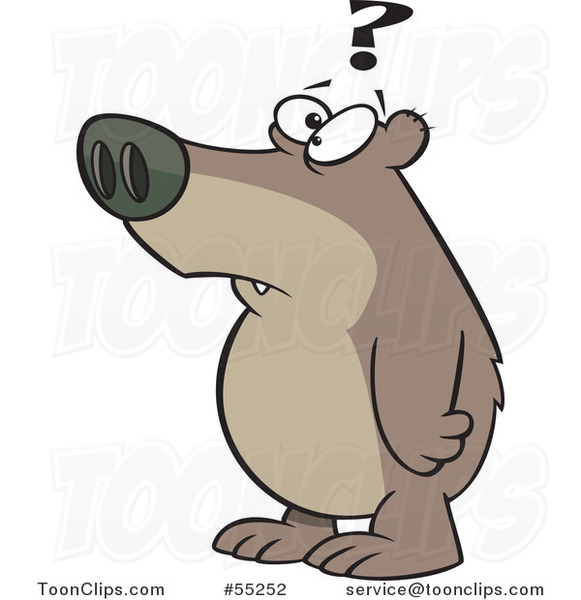 Cartoon Confused Bear With A Question Mark 55252 By Ron Leishman